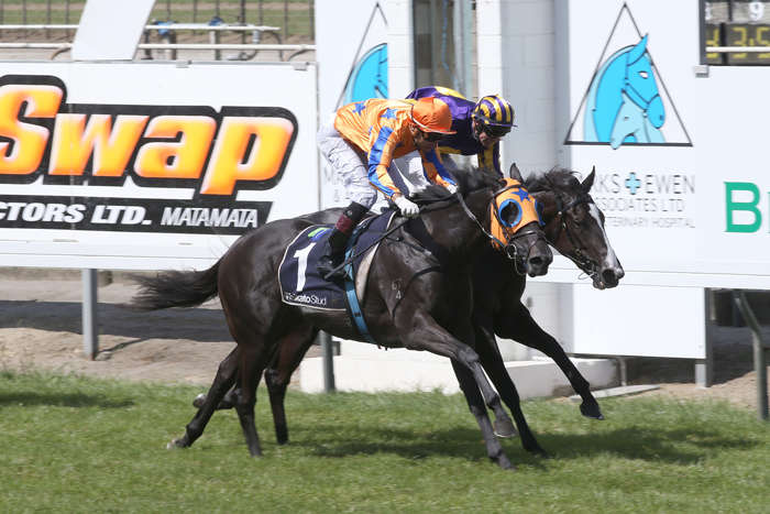 Champion 2YO Nominated Gold Fever Set To Chase Early Stakes